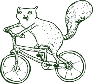 Squirrels like Jimmy B., shown here on a bike, can be seen around the Goshen College campus.