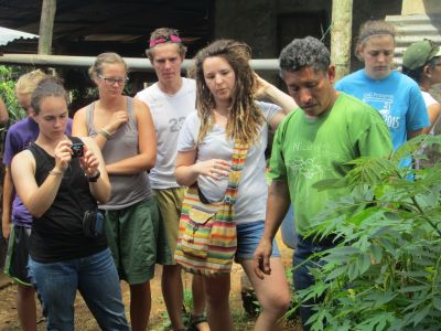 Students learn about medicinal plants on the Vicente Padilla coffee farm.