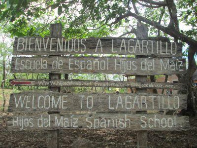Welcome to El Logartillo