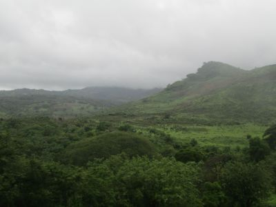 The verdant green of Jinotega