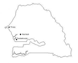 Service location:  Kaolack & Toubacouta