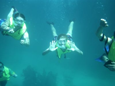 Students swimming during Marine Biology term