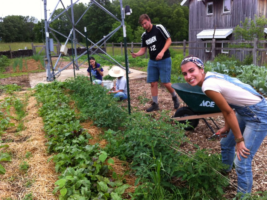 ASI students tending the Merry Lea sustainable farm.