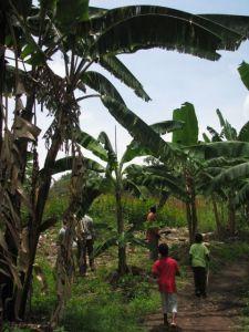 Nata – Linking tourism, ag, and livelihoods