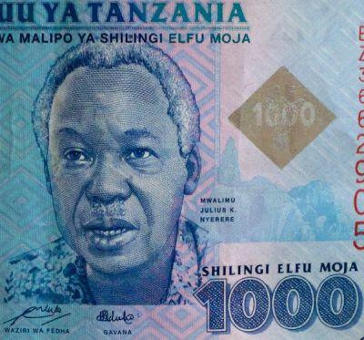 Week of Mwalimu Nyerere