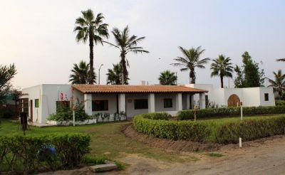 Peru SST retreat: Looking back and ahead