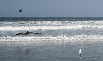 Retreat: Surf and turf fun