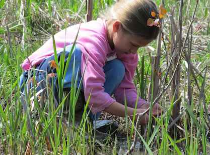 Merry Lea to host annual NatureFest May 10-11