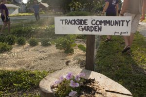 CommunityGarden10
