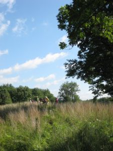 Orienteers will be hiking on the west side of Merry Lea's property, which includes prairie areas and oak savanna.