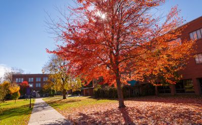 "Arbor Day Foundation honors Goshen College as ""Tree Campus USA"""