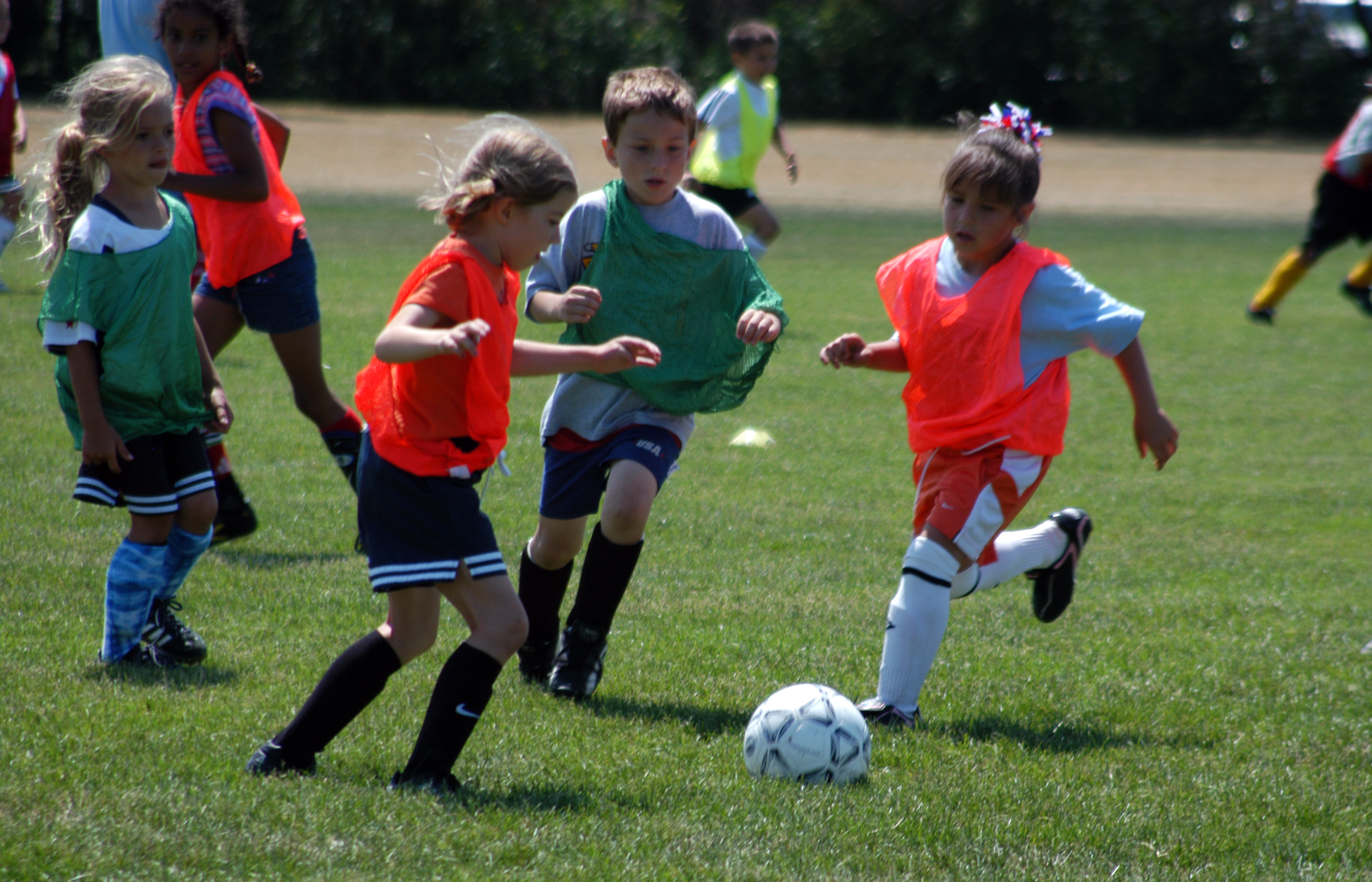 the purpose of youth sports offered essay Free youth athletics essay the benefits of  the purpose of youth sports  programs is to teach children the fundamentals of various sports these  programs.