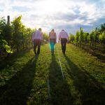 Three businesspeople walking in a field