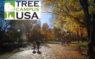 GC maintains Tree Campus USA honors