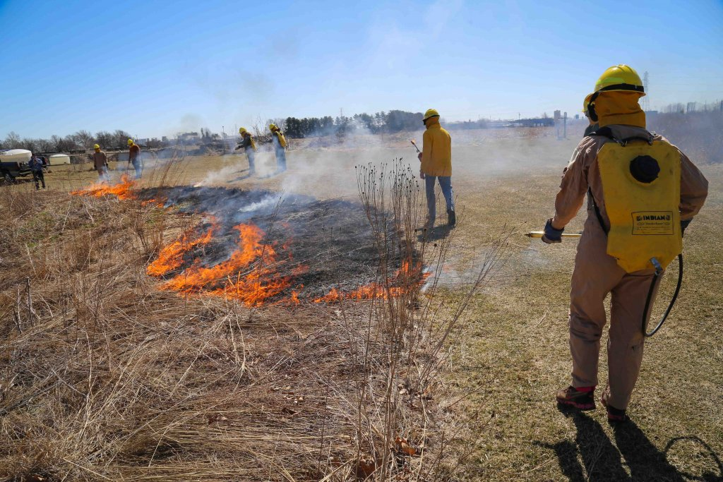 People burning a prairie while wearing safety equipment