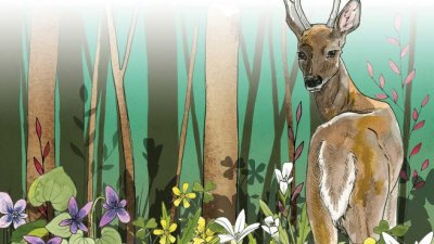Painting of a deer in the forest looking back