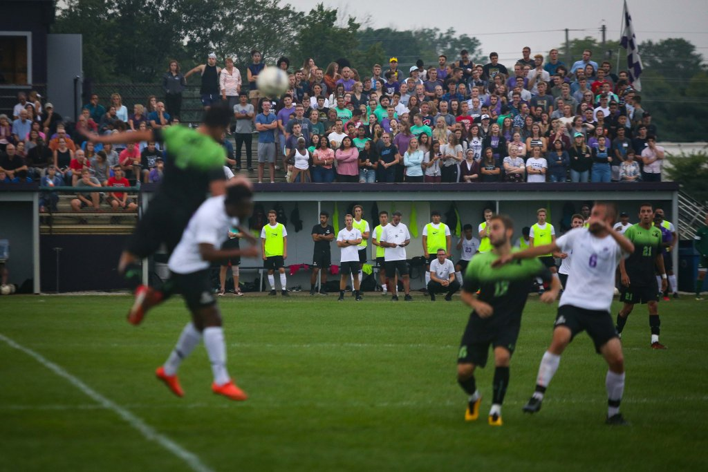 A large group of people watching a sports game from the stands