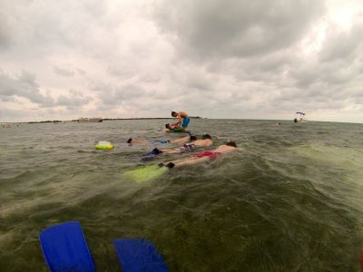 Snorkeling in seagrass beds & mudflats