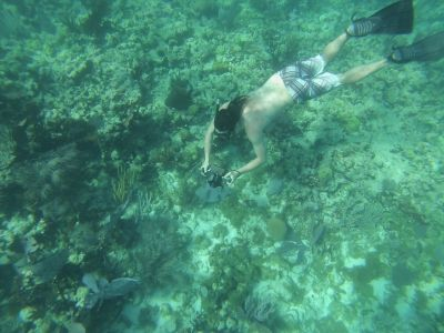 Snorkeling the Coral Reef